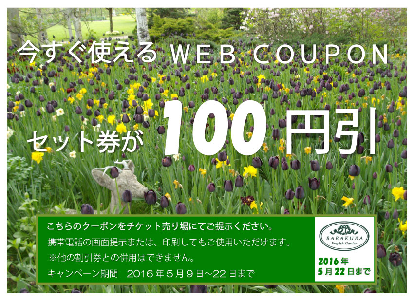 web-coupon201605
