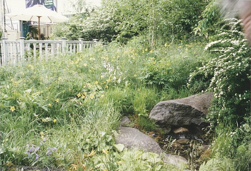 2002年 英国チェルシーの庭img