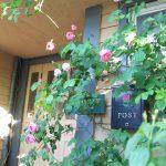 バラが咲きはじめました。庭園に咲くバラはガーデンセンターでお求めいただけます【その2】