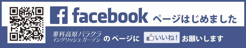 Facebookbarakura