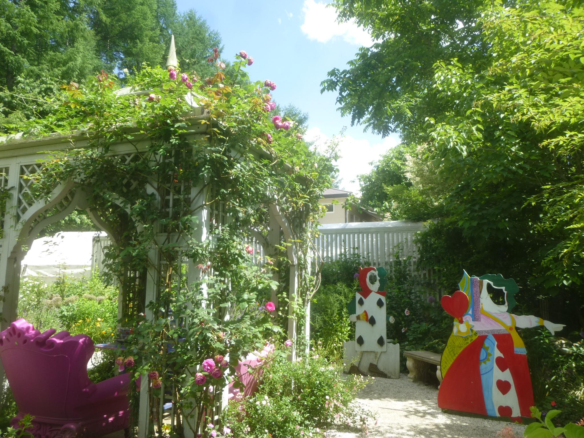 Alice in the garden20160701