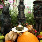 Enjoy 🎃 BARAKURA Halloween! 10/31(Mon) まで