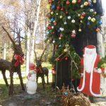 蓼科高原で過ごす、特別なクリスマス。 ☆バラクラのクリスマス5DAY'S☆
