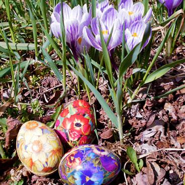 Barakura Easter