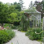 7月3日 初夏のお庭ともう一つのお庭