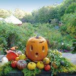 バラクラ・ハロウィン 庭園内を仮装パレード