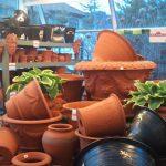 イギリス直輸入の珍しい植木類や、季節の草花が大量入荷!(蓼科バラクラ)