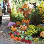 ハーベストフェスティバル バラクラの収穫祭 〜ファッション・ミュージック&フードの祭典〜
