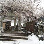 冬の英国庭園への誘い
