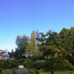 10月8日(木) 晴天の「バラクラの収穫祭 ハーベストフェスティバル」2日目