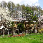 庭園内 ブッフェ・レストラン 『ジャルディーノ』 5月 ゴールデンウィーク期間中のランチ営業日のご案内
