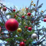 今週末11/21(土)からの3連休は一足早いクリスマスをバラクラで!