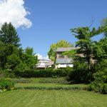 お庭のバラの様子が気になる今日この頃。 5月30日(土)のガーデン