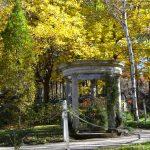 10月30日(木) ガーデンの様子
