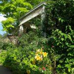 暑い町中から、蓼科の涼しいお庭に。