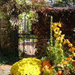 静寂に包まれる秋の庭をお楽しみ下さい