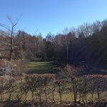 12月の庭園風景『英国庭園の骨格を楽しむ』