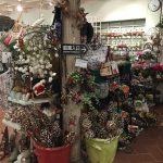 クリスマスデコレーションのガーデンセンター!!