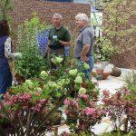 国際バラとガーデニングショウ ヒドコートのグリンさんとスクール生がケイ山田の庭づくりをサポート