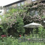 11月20〜27日 大阪&神戸で造園相談会 開催します/★ご予約受付中★