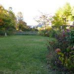 夕刻の暖かい陽だまりのお庭です。