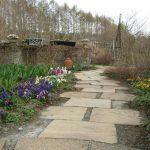 お庭の春色が一段と広がりました!