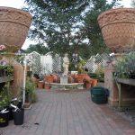 「秋植え球根」と「ウイッチフォードの素焼鉢」 大量入荷のお知らせです!