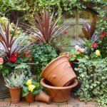 ケイ山田に学ぶ英国庭園セミナー 開催!