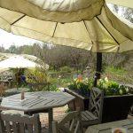 ゴールデンウィーク中の「バラクラ カフェ」ランチ&カフェ メニューのご案内