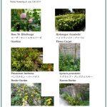2017/07/12 Head Gardener's Report