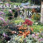 バラクラの夏 SUMMER HOLIDAY 7月18日から