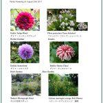 2017/08/20 Head Gardener's Report