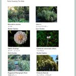 2017/09/15 Head Gardener's Report