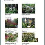 2017/09/29 Head Gardener's Report