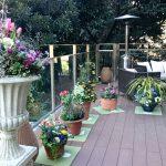寄植えの芸術展 バラクラスプリングフェア in白金八芳園
