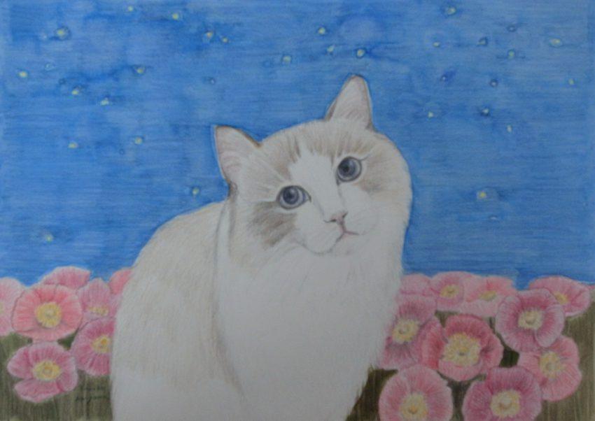 女流画家 秋山智子