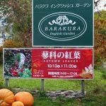 バラクラの紅葉と蓼科高原秋の魅力をご紹介2018 Part 2