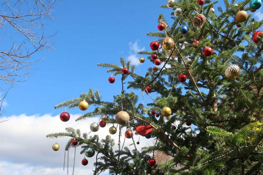 バラクラ クリスマスツリー
