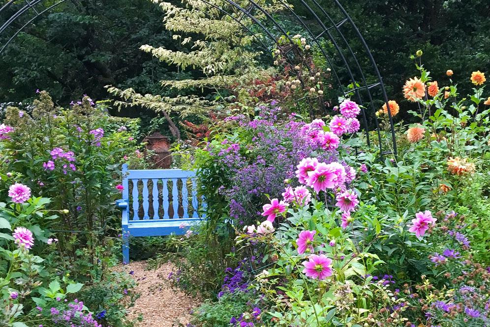 9月のイベント 秋の庭