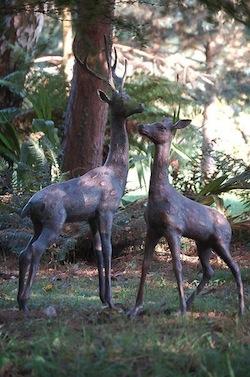 Deer Ex Large set.jpg