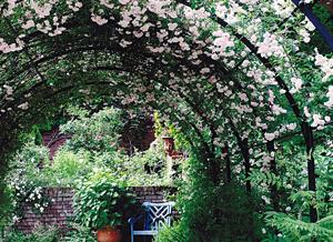 バラクラ イングリッシュ ガーデンの四季