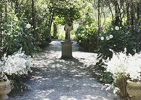 ダリアの庭