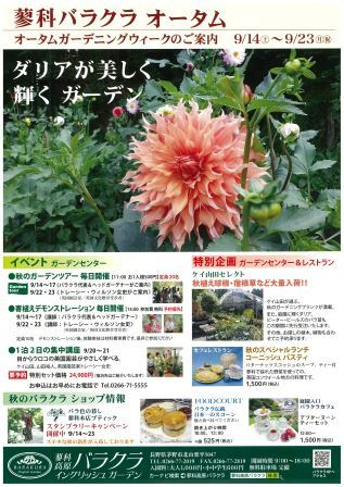 autumn gardening week 2013.jpg