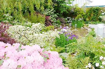 Chelsea Flower Show 2009