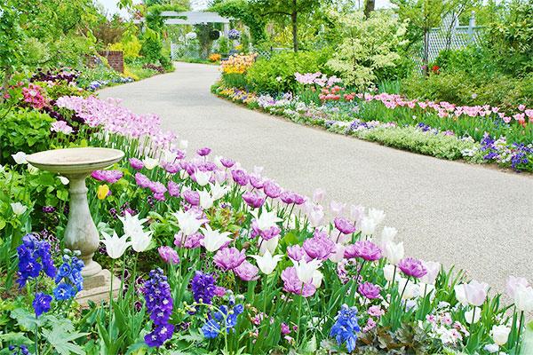 ガーデンデザインについて 蓼科高原バラクライングリッシュガーデン