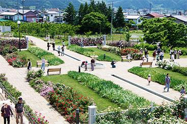 中野一本木公園
