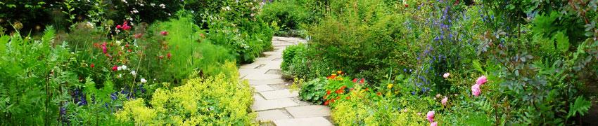 庭園の撮影利用について
